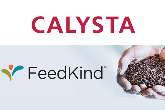 AE Global awarded Calysta Contract